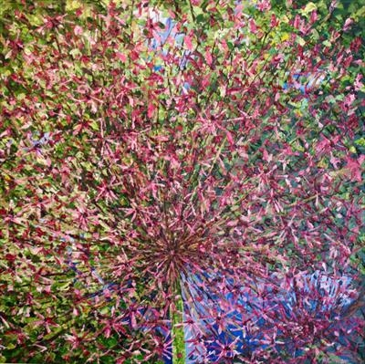 Allium Burst 2. by Alison Cowan, Painting, Acrylic on canvas