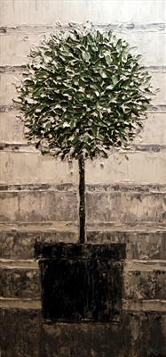 Bay Tree by Alison Cowan, Painting, Acrylic on canvas